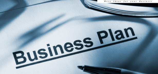 quick affordable business plan, writing a business plan, business plan for startups, Why You Need a Business Plan, evolution of a startup business plan, Quick Business and Marketing Plan, Planning Your Startup, review business, business forecast, prepare a business plan, Business plan strategy, plan your business online,