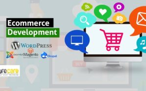 How Do You Build Your Own E-commerce Website?
