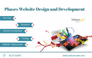 Website Development Process in India